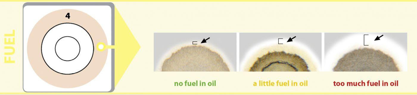 Benzin fuel